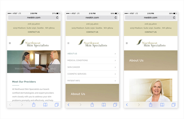Mobile View Northwest Skin Website